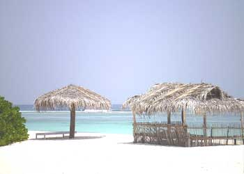 kadmat-beach-resort